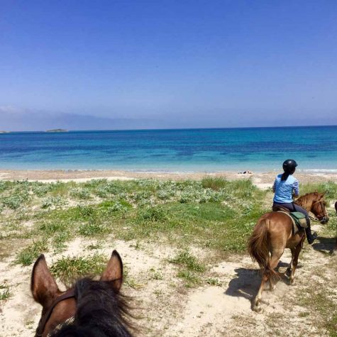 horse-country-sardegna-0034