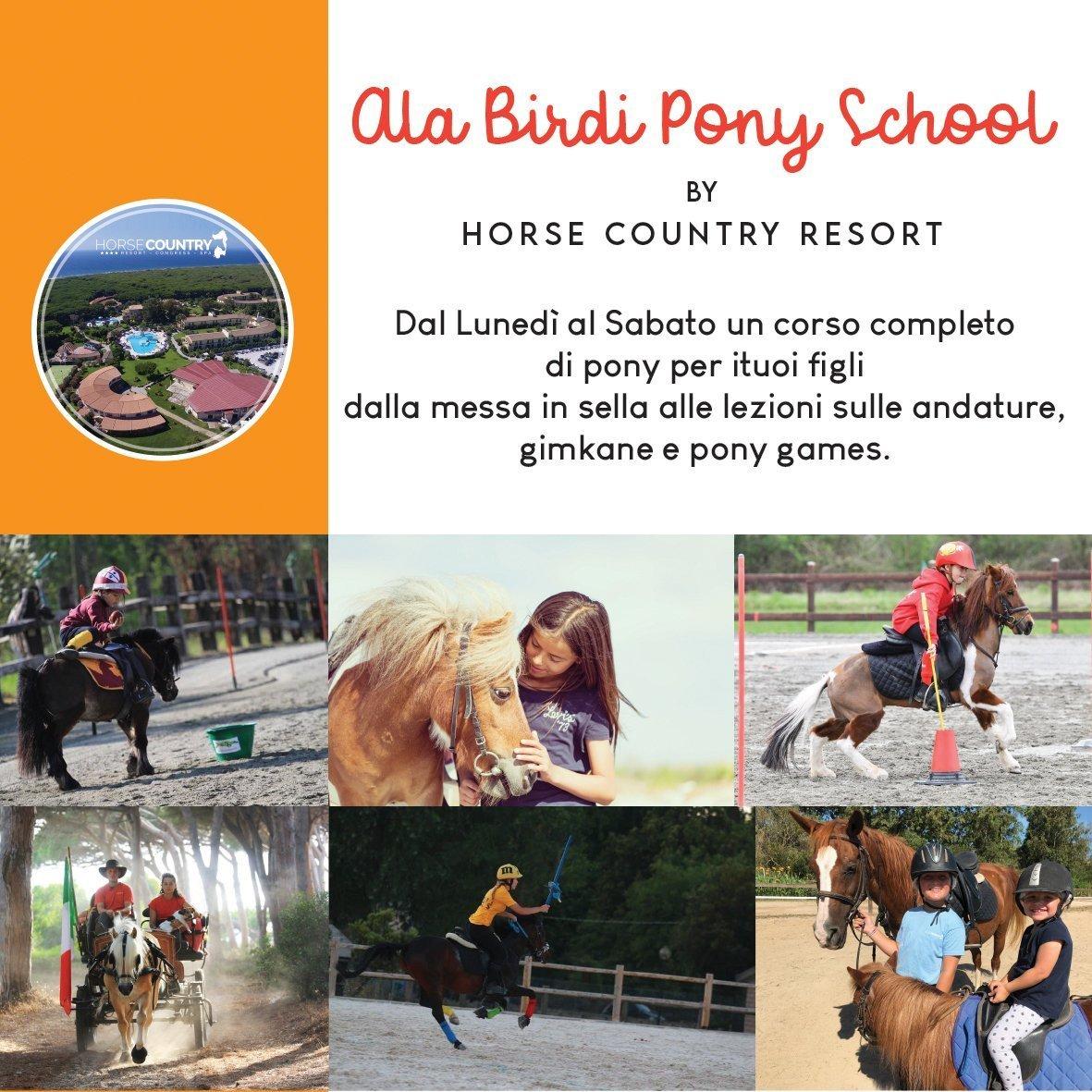 Pony School e Pony Games